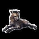 Taxidermied Hyena