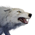Icon pet Wolf Alpha.png