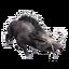 Icon Stuffed Boar.png