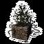 Icon PlantPot05.png