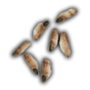 Icon coniferseeds.png