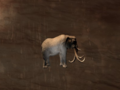 Pet Greater Elephant.png