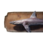 Icon dogfish trophy.png
