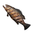 Cooked Grouper