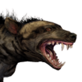Icon pet HyenaStriped.png