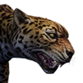 Icon pet Jaguar.png