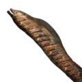 Icon Moray eel cooked.png