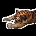 Tigerkadaver
