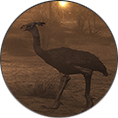 Icon Creatures 1.png