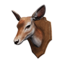 Icon trophy deer.png