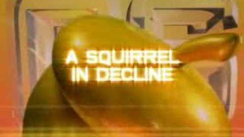 Conker: Celebrity Squirrel