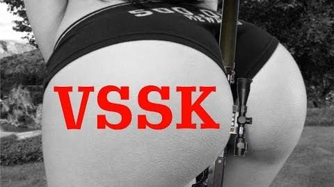 Is the VSSK Vikhlop Worth It?