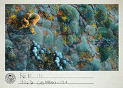 Ref III Mold Composition.jpg