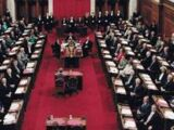 Georgeland Senate