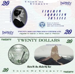 $20 banknote