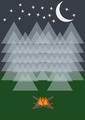 Iluminos Forest