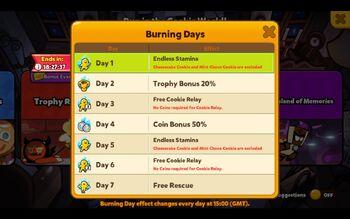 Burning days.jpg