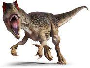 AllosaurusLayers vvi6q7