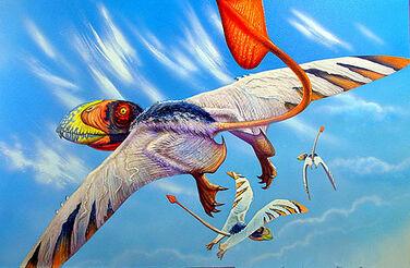 Dimorphodon-macronyx-14-plain 71789 1.jpg