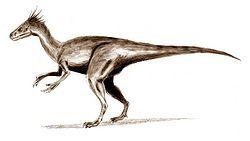 Ornitholestes3.jpg