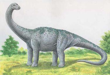 Pcab261 kotasaurus.jpg