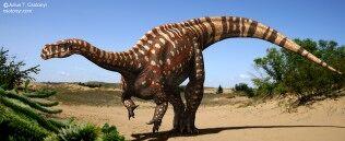 316px-Aardonyx celestae Csotonyi Bonnan.jpg