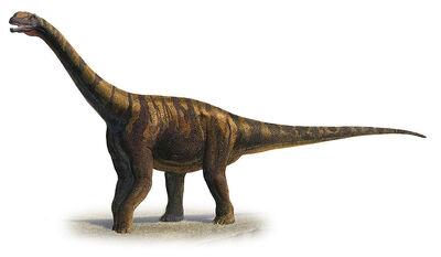 Abrosaurus-dongpoi-a-prehistoric-era-sergey-krasovskiy.jpg
