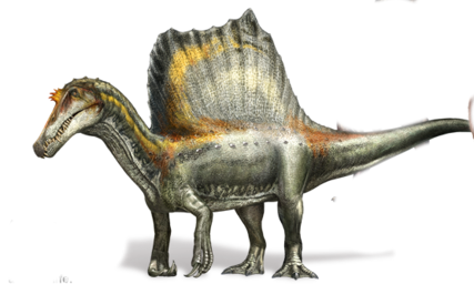 Spinosaurus Four Legs.png