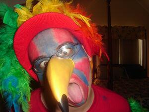 Parrot Costume (2).jpg