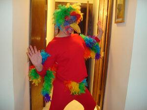 Parrot Costume (1).jpg