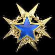 Medal za służbę 2015 Poziom 1