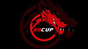 Binary Dragons csgopolygon - Season 1