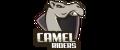 Camel Riders - logo 2
