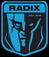 RADIX - logo
