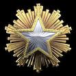 Medal za służbę 2016 Poziom 1