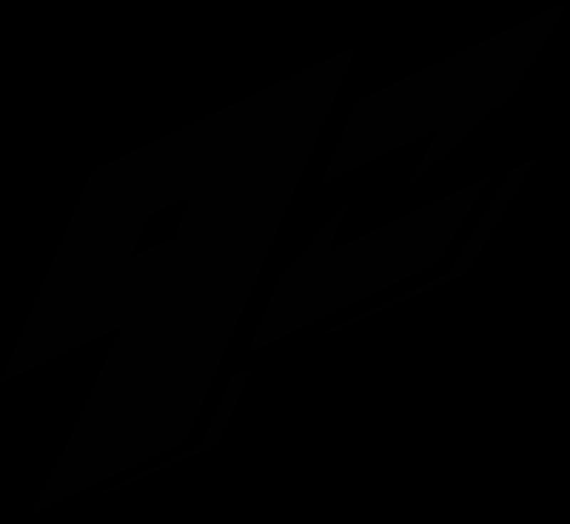 9z Team FEM