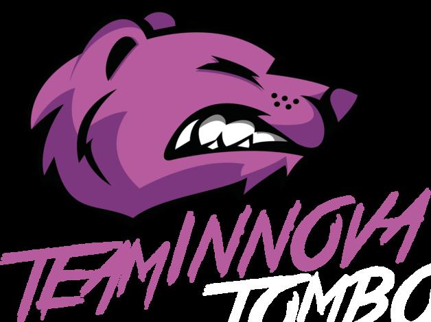 Team Innova Pink