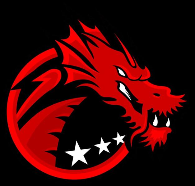 Binary Dragons