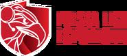 Polska Liga Esportowa 2020