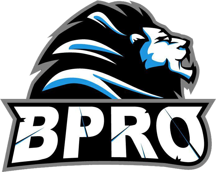 BPro Academy
