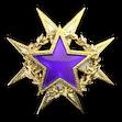 Medal za służbę 2015 Poziom 2