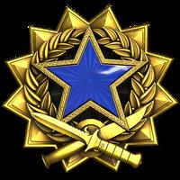 Service medal 2017 lvl3 large-1-