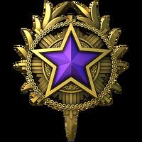 Service medal 2020 lvl4 large