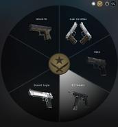 Пистолеты Т с чешкой