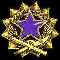 Service medal 2017 lvl4 large-1-