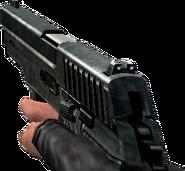 P228 cscz