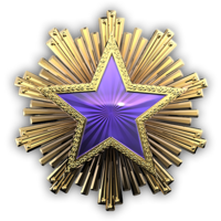 Csgo-service medal 2016 4-1-