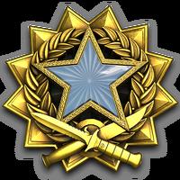 Service medal 2017 lvl1 large-1-