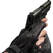 P228 ds
