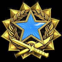 Service medal 2017 lvl2 large-1-